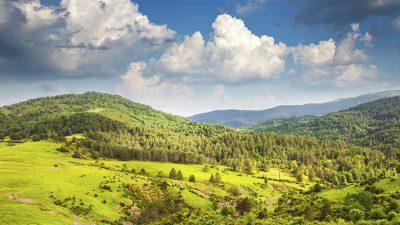 Oposiciones Agente de Protección de la Naturaleza de Aragón