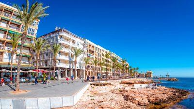 OEP Ayuntamiento de Torrevieja (Alicante) 2019 2020