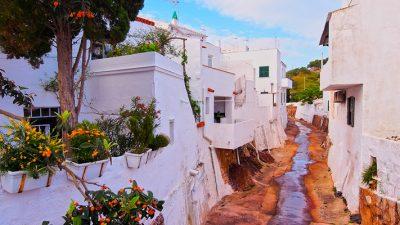 OEP Menorca 2019 2020