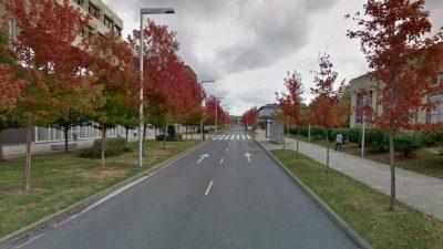 OEP Universidad del País Vasco 2019 2020