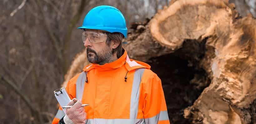 cómo ser agente forestal medio ambiente
